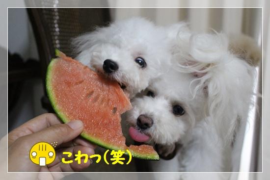 こわっ!なお顔(笑)
