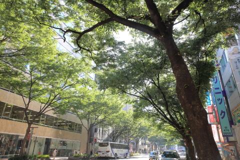 20150717shinshiushi3.jpg