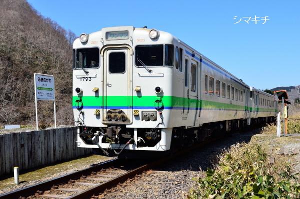 DSC_1037-ynt.jpg