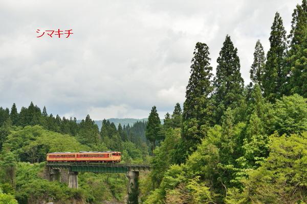 DSC_7550-km.jpg
