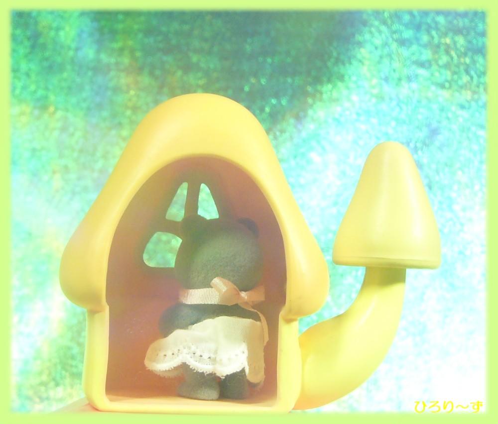 ふしぎの森のキノコ 6