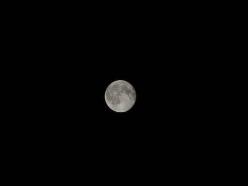 満月・・・の翌日