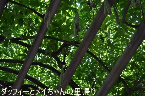 2015-8-2 8-4用 (1)