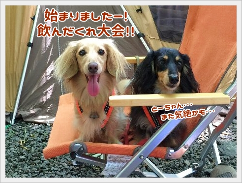 fc2_2015-7-22_01.jpg