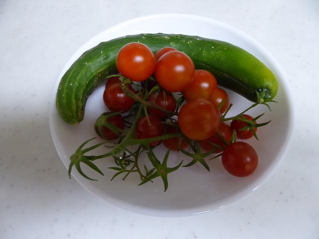 150721ポン太野菜①