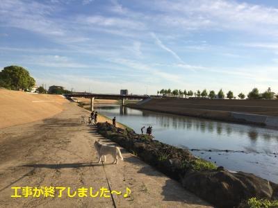 77_convert_20150603001201.jpg