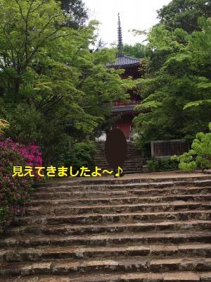79_convert_20150608211943.jpg