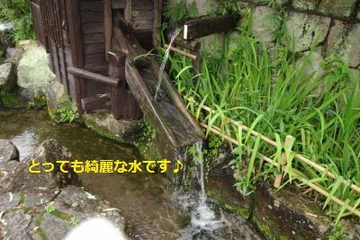IMGP8159_convert_20150723193704.jpg