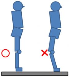 の が 痛い 裏側 膝