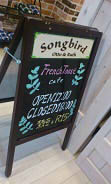 songbird4 (6)
