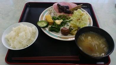 尾瀬 (12)
