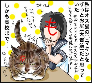 カン違い4