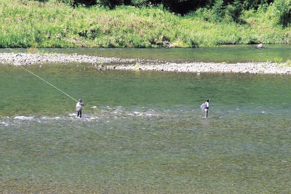 仁淀川鮎釣り