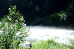 川の上を水蒸気が凄い!
