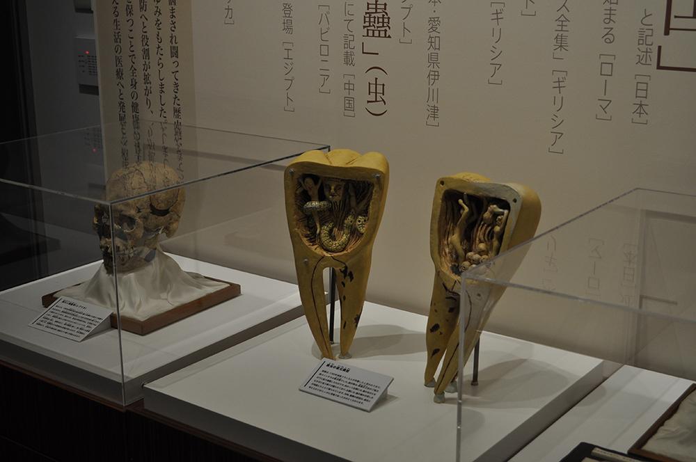 nagoyaske (7)