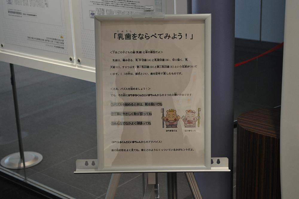 nagoyaske (33)