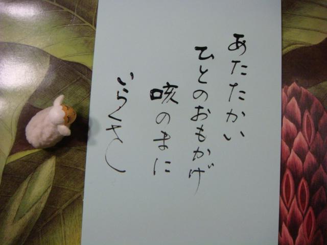 DSC04979.jpg