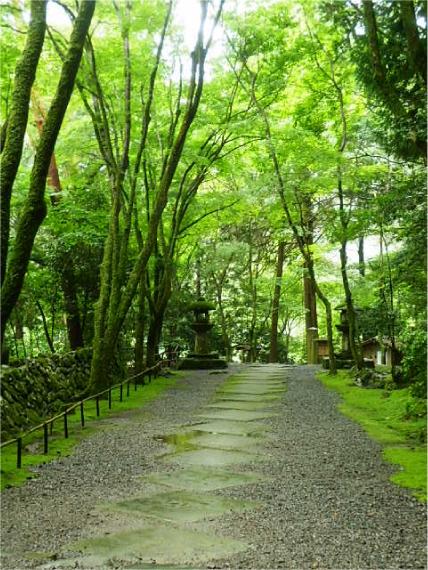 世界遺産高山寺