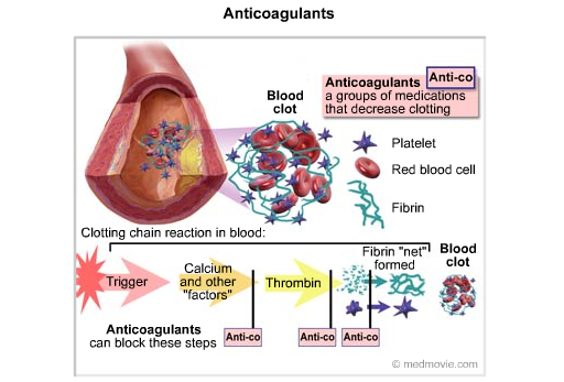 anticoagulants[7]