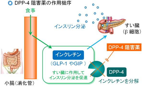 diabetes-a2.jpg