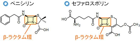 kyoyzai-dd3.jpg