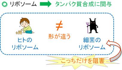 kyoyzai-dd5.jpg