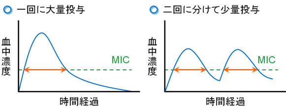 kyoyzai-k3.jpg