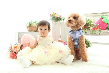 1歳記念群馬伊勢崎ペットと一緒ふうかちゃんドレス
