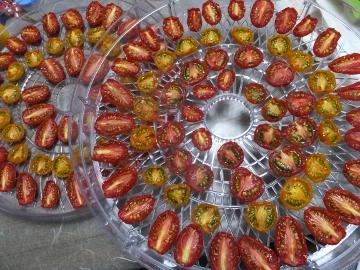 ドライミニトマト2