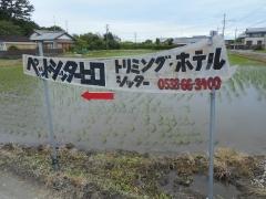 DSCN0746.jpg