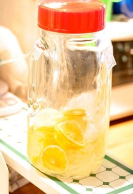 IMG_0009 レモン