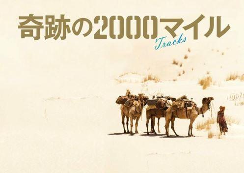 officialfacebook500.jpg