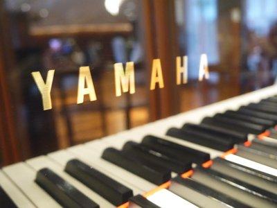 YAMAHA-visit-L
