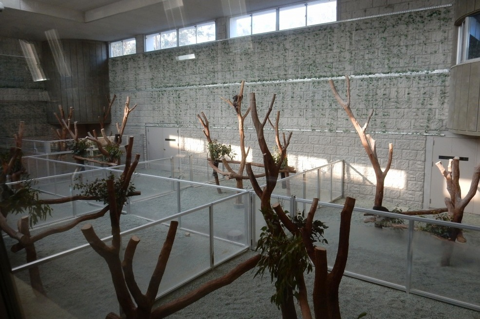 2014-12-30淡路島徳島 069