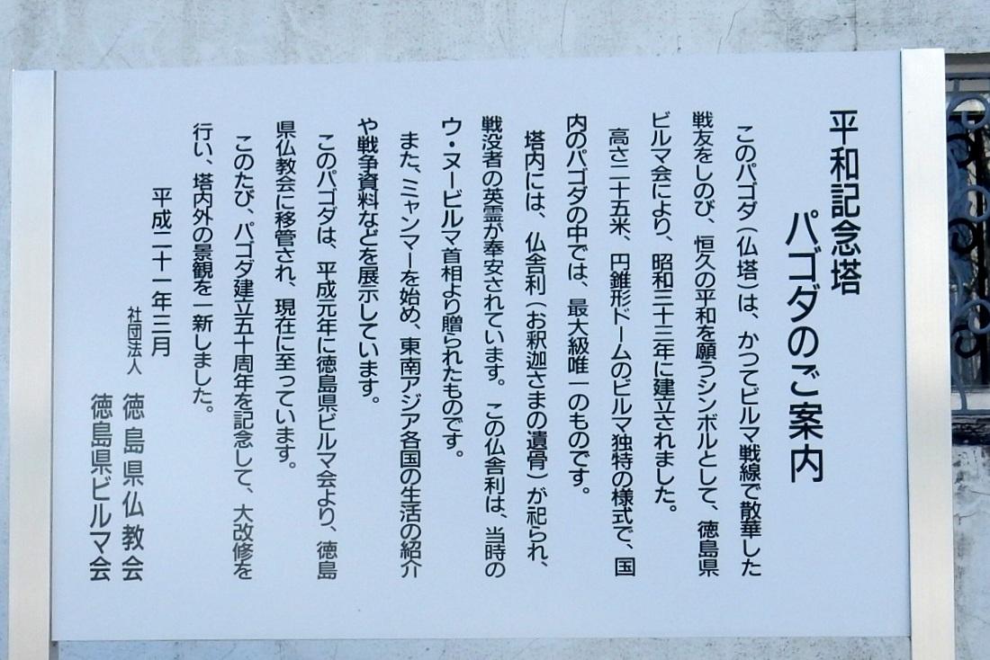 2014-12-30淡路島徳島 217