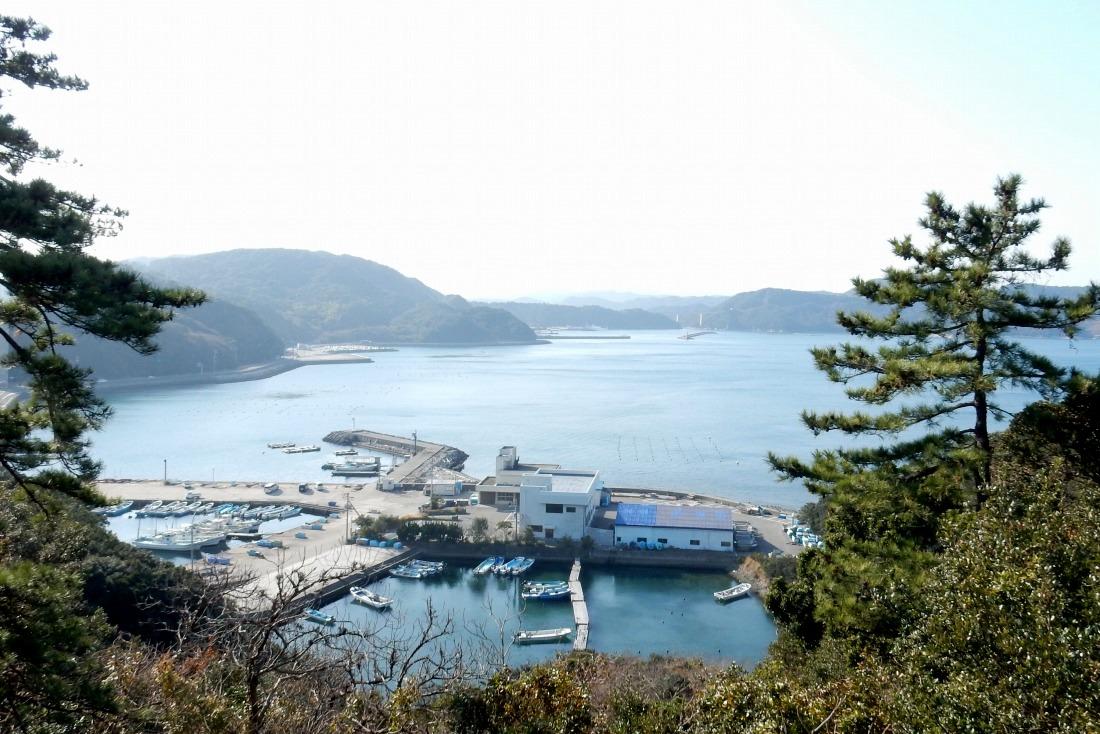 2014-12-30淡路島徳島 278