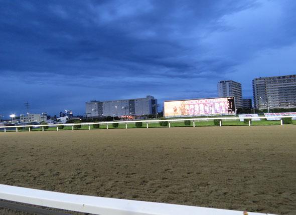 川崎競馬7