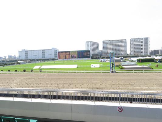 川崎競馬場1