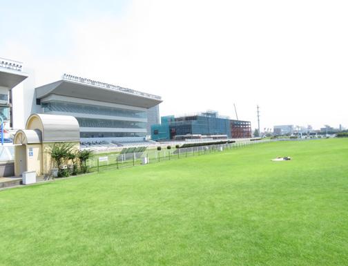 川崎競馬場4