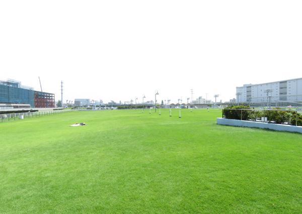 川崎競馬場5