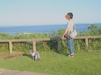 城ケ島公園2015710-16