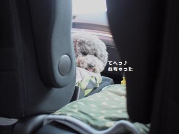 帰りの車20150710-3