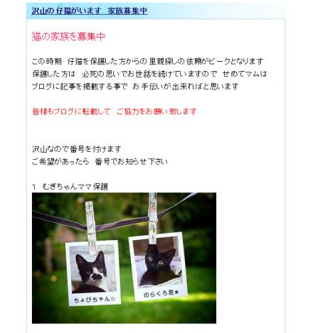 繧ュ繝」繝励メ繝」_convert_20150810164727