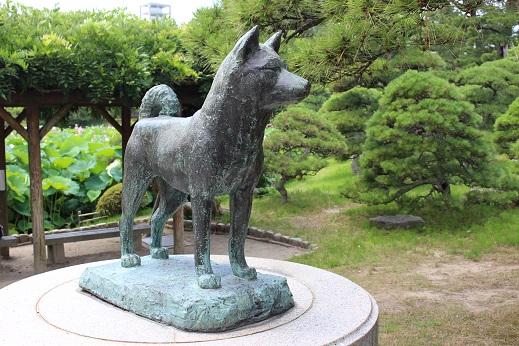 20150714新潟旅行:白山神社 タマ公