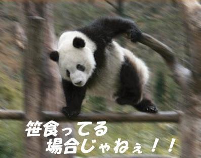 20150726010733468.jpg