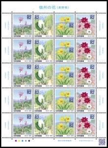 20150821信州の花