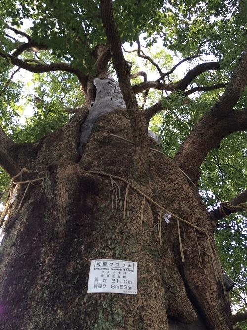 山王神社12