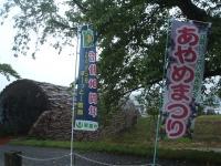 2015-06-27-190.jpg
