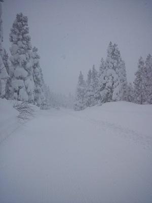 阿仁スキー場4