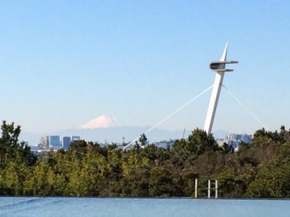 葛西臨海公園富士山